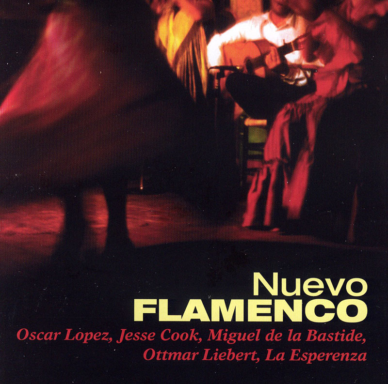 Nuevo Flamenco image