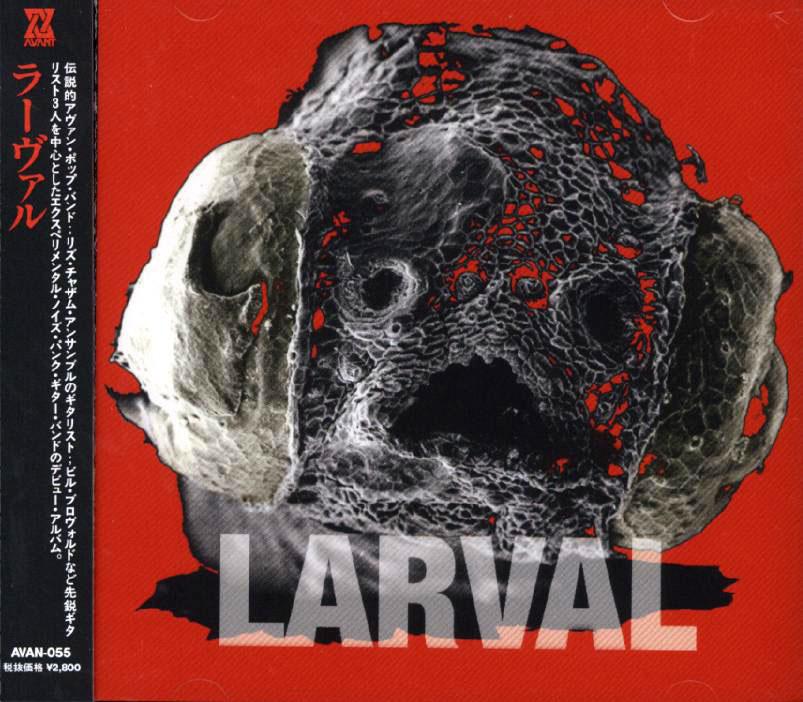Larval image