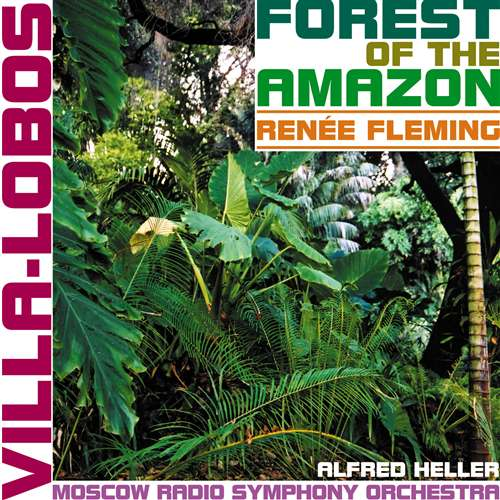 Forest of the Amazon