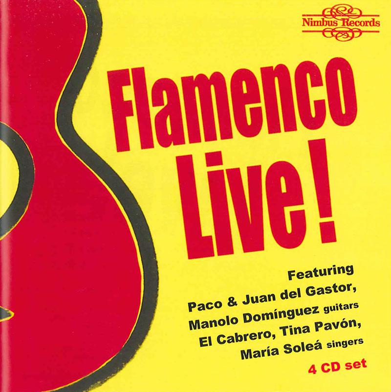Viva Flamenco image