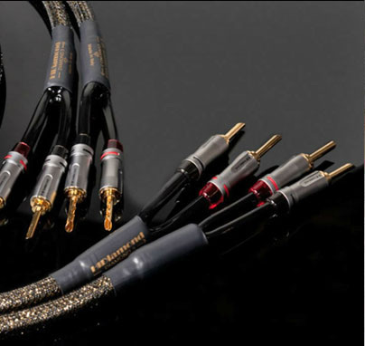 Speakers cable D3