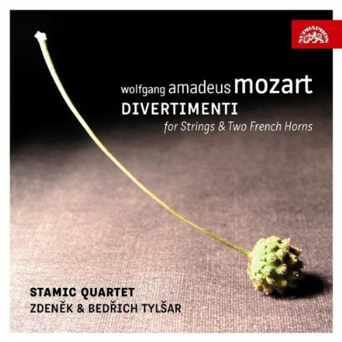 Divertimenti for Strings and Two French Horns